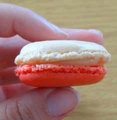 Macaron cerise et chocolat blanc bigout zoom